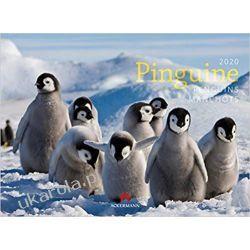 Kalendarz Pingwiny Pinguine 2020 Penguins Calendar Broń palna