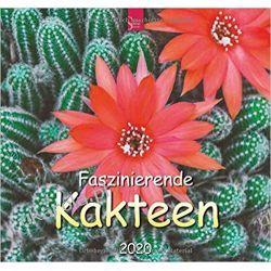 Kalendarz Kaktusy 2020 Calendar Mundury, odznaki i odznaczenia