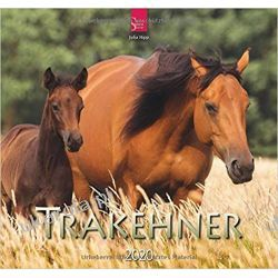 Kalendarz Konie 2020 Horses Calendar Kalendarze ścienne