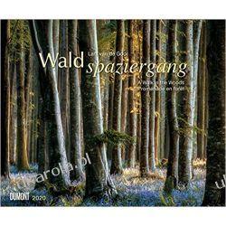 Kalendarz Las Walk in the Woods 2020 Calendar  Marynarka Wojenna
