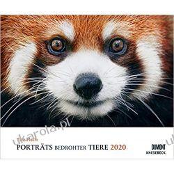 Kalendarz Zagrożone Zwierzęta 2020 Tim Flach: Portraits of Endangered Animals 2020 Calendar