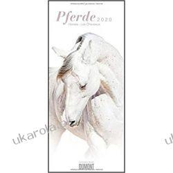 Kalendarz Konie Pferde Horses Chevaux 2020 Calendar Pozostałe