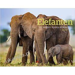 Kalendarz Słonie 2020 Elephants Calendar Świat roślin i zwierząt