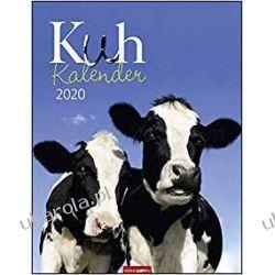 Kalendarz Krowy Cows 2020 Calendar
