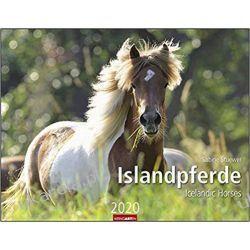Kalendarz Konie Islandzkie Iceland horses 2020 Calendar