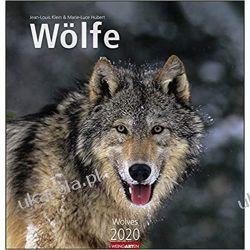 Kalendarz Wolves 2020 Wilki Calendar