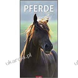 Kalendarz Konie 2020 Horses Calendar Pozostałe