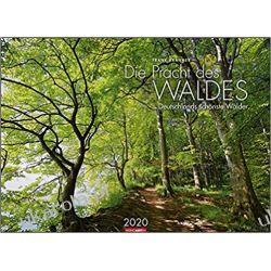 Kalendarz Las 2020 Woods Forest Calendar
