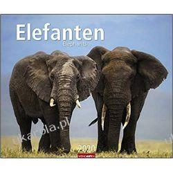 Kalendarz Słonie Elephants 2020 Calendar Pozostałe