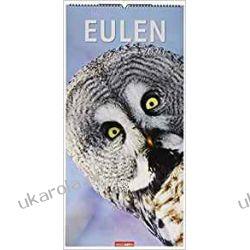Kalendarz Sowy Owls 2020 Calendar Kalendarze ścienne