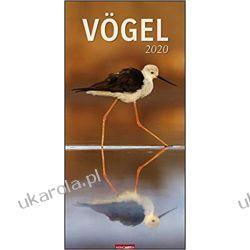 Kalendarz Ptaki Birds 2020 Calendar Biografie, wspomnienia