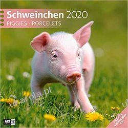 Kalendarz Świnie Świnki Piggies Pigs 2020 Calendar Marynarka Wojenna