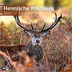 Kalendarz Dzikie Życie 2020 Native Wildlife Calendar Pozostałe