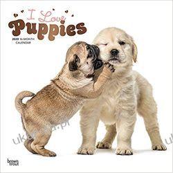 Kalendarz Szczeniaki Puppies, I Love 2020 Square Wall Calendar