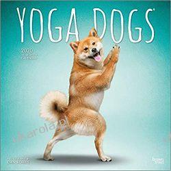 Kalendarz Yoga Dogs 2020 Square Wall Calendar