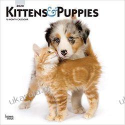 Kalendarz Koty i Psy Kittens & Puppies 2020 Calendar