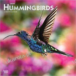 Kalendarz Kolibry Hummingbirds 2020 Square Wall Calendar