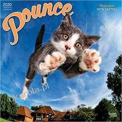Kalendarz z kotami Pounce 2020 Square Wall Calendar Broń pancerna