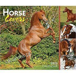 Kalendarz biurkowy Konie Horse Lovers 2020 Day-to-Day Calendar