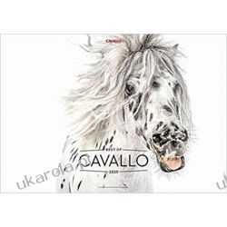 Kalendarz Konie Best of Cavallo 2020: Passion Horse Calendar