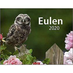 Kalendarz z sowami 2020 Kalendarze ścienne