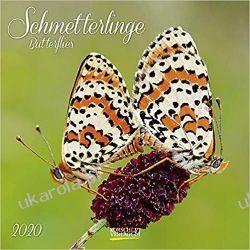 Kalendarz Motyle Butterflies Calendar 2020