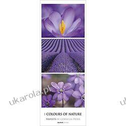 Kalendarz Colours of Nature 2020 XXL Calendar Marynarka Wojenna
