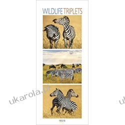 Kalendarz Zwierzęta Wildlife Triplets 2020 Calendar Biografie, wspomnienia