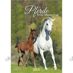 Kalendarz Konie Horses Calendar 2020 Aktorzy i artyści