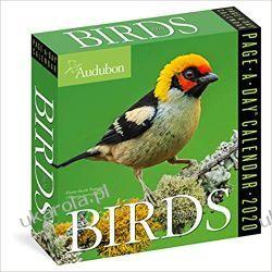Kalendarz dzienny Ptaki Audubon Birds Colour Page-A-Day Calendar 2020 Pozostałe