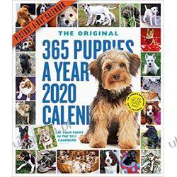 Kalendarz Szczeniaki 365 Puppies-A-Year Picture-A-Day Wall Calendar 2020 Książki i Komiksy