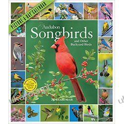 Kalendarz Ptaki Audubon Songbirds Picture-A-Day Wall Calendar 2020 Kalendarze ścienne