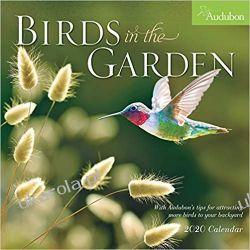 Kalendarz Ptaki Audubon Birds in the Garden Wall Calendar 2020 Książki i Komiksy