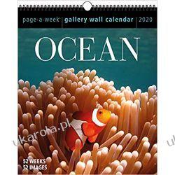 Kalendarz 2020 Ocean Gallery Wall Calendar Książki i Komiksy