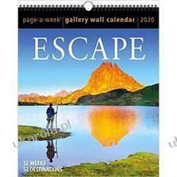 Kalendarz 2020 Escape Gallery Wall Calendar Książki i Komiksy