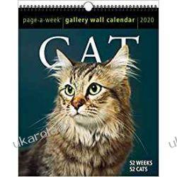 Kalendarz Koty 2020 Cat Page-A-Week Gallery Wall Calendar Pozostałe
