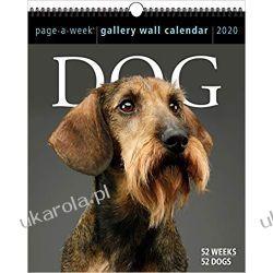 Kalendarz Psy 2020 Dog Page-A-Week Gallery Wall Calendar Książki i Komiksy