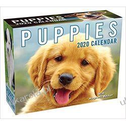 Kalendarz Szczeniaki Puppies 2020 Mini Day-to-Day Calendar Książki i Komiksy