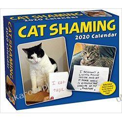 Kalendarz Biurkowy z kotami Cat Shaming 2020 Day-to-Day Calendar Książki i Komiksy