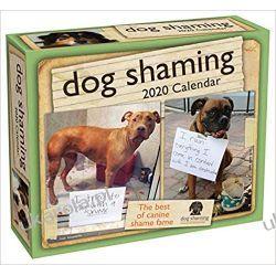 Kalendarz Psy Dog Shaming 2020 Day-to-Day Calendar Książki i Komiksy
