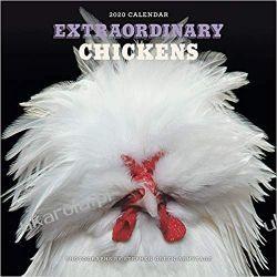 Kalendarz Kurczaki Extraordinary Chickens 2020 Wall Calendar Historyczne