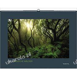 Kalendarz Magiczne lasy 2020 Magical Forests Calendar Marynarka Wojenna