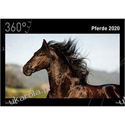 Kalendarz Konie 360° Horses 2020 Calendar Marynarka Wojenna