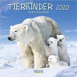 Kalendarz Dzieci Zwierząt Animal Babies 2020 Calendar
