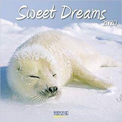 Kalendarz Sweet Dreams 2020 Calendar Kalendarze ścienne