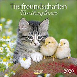 Kalendarz Animal friends Calendar 2020