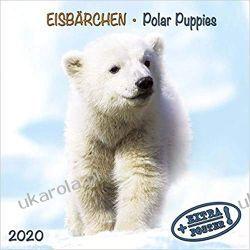 Kalendarz Niedźwiadki Polarne Polar Bears 2020 Calendar Biografie, wspomnienia