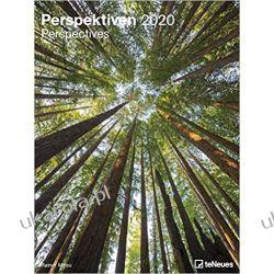 Kalendarz 2020 Perspectives 48 x 64 Poster Calendar