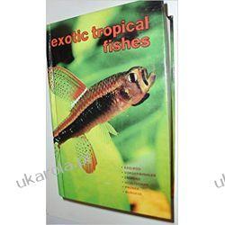 Exotic Tropical Fishes Zwierzęta domowe i hodowlane