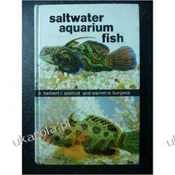 SALTWATER AQUARIUM FISH Zwierzęta domowe i hodowlane